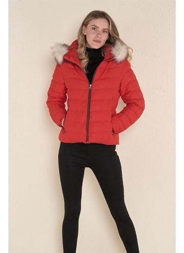 Z Giyim Kapşonlu Kısa Şişme Mont Kırmızı